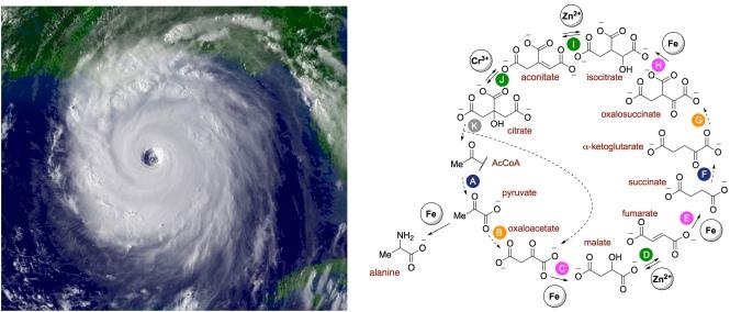 hurricane rTCa